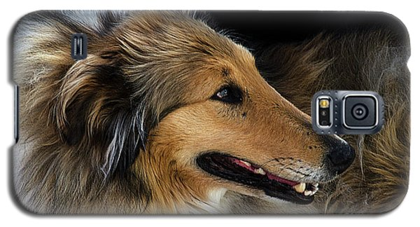 Galaxy S5 Case featuring the photograph Man's Best Friend by Bob Christopher
