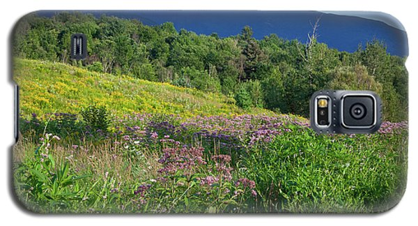 Galaxy S5 Case featuring the photograph Mansfield Meadow by Susan Cole Kelly