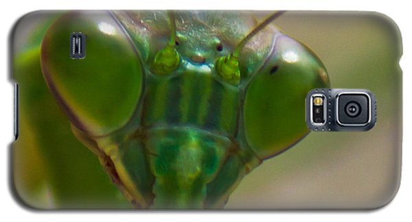 Mantis Face Galaxy S5 Case by Jonny D