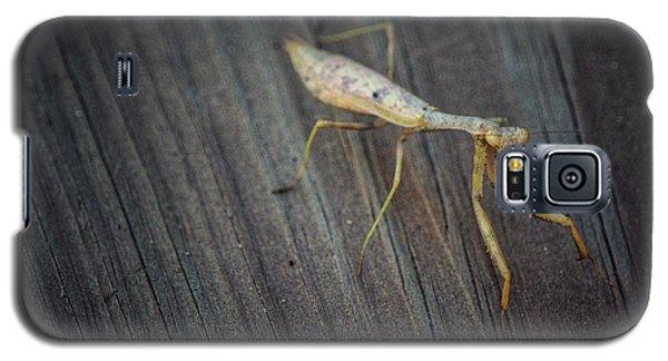 Mantis  Galaxy S5 Case