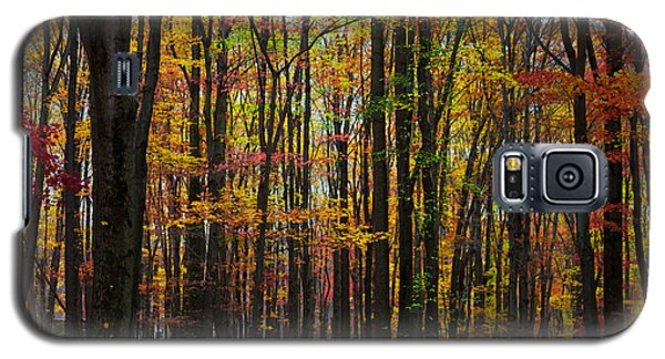 Many Colors Of Autumn Galaxy S5 Case by April Reppucci