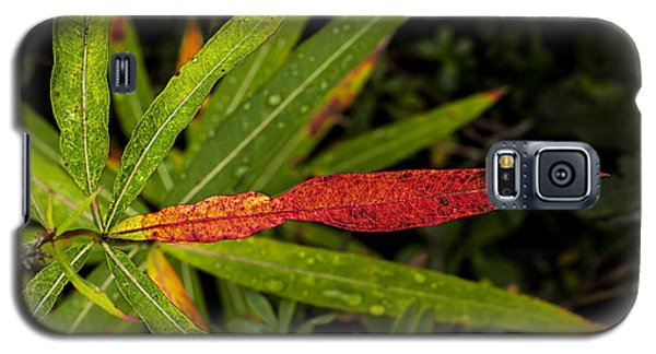 Many Faces Of Fireweed 2 Galaxy S5 Case