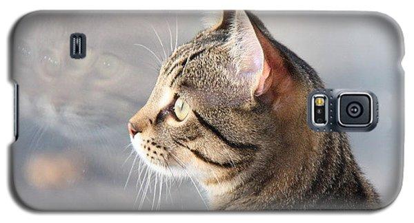Galaxy S5 Case featuring the photograph Many Faces Of Monty.. by Jolanta Anna Karolska