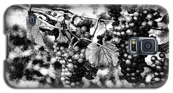 Galaxy S5 Case featuring the photograph Many Grapes by Rick Bragan