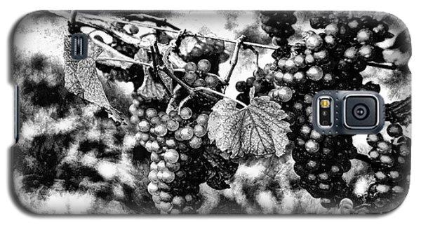 Many Grapes Galaxy S5 Case