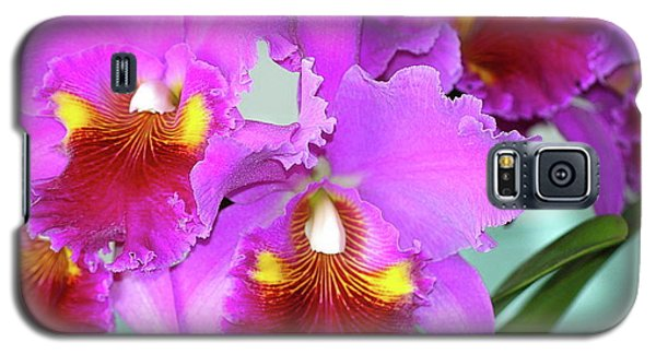 Galaxy S5 Case featuring the photograph Many Purple Orchids by Lehua Pekelo-Stearns