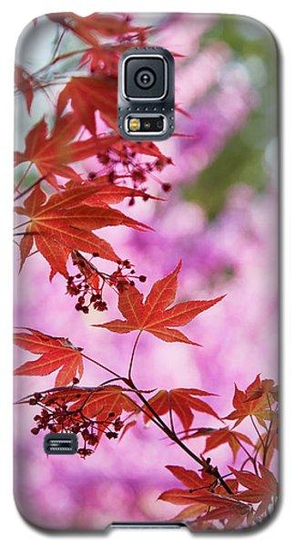 Maple Galaxy S5 Case