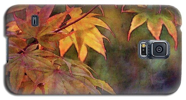 Maples Golden Glow 5582 Idp_2 Galaxy S5 Case