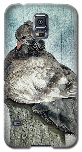 Maragold Galaxy S5 Case