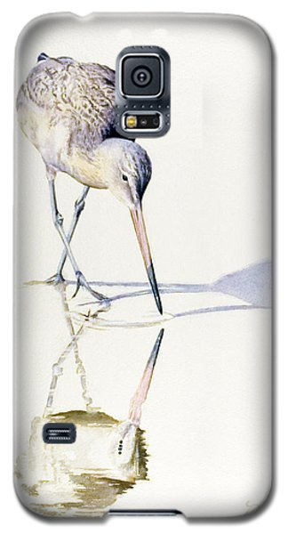 Marbled Godwit Times Three Galaxy S5 Case