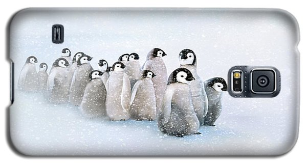 March Of The Penguins Galaxy S5 Case by Thanh Thuy Nguyen
