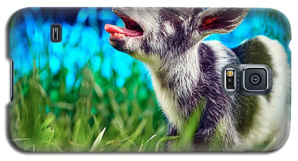 Baby Goat Kid Singing Galaxy S5 Case
