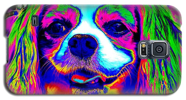 Mardi Gras Dog Galaxy S5 Case
