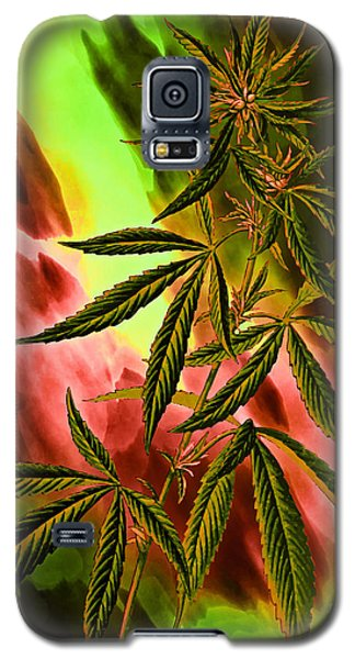 Marijuana Cannabis Plant Galaxy S5 Case