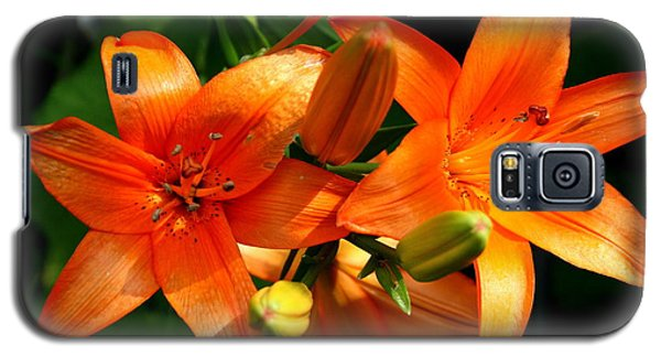 Marmalade Lilies Galaxy S5 Case by David Dunham
