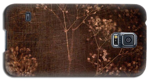 Marroncito Galaxy S5 Case