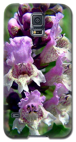 Marsh Flower Galaxy S5 Case