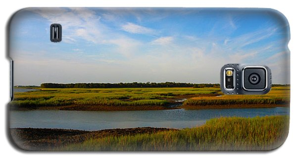 Marshland Charleston South Carolina Galaxy S5 Case
