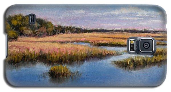 Marshland In Florida Galaxy S5 Case