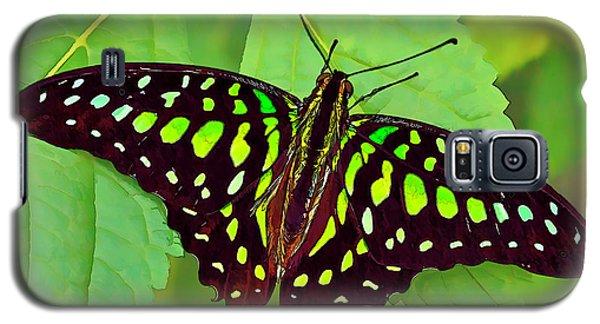 Marvelous Malachite Butterfly 2 Galaxy S5 Case