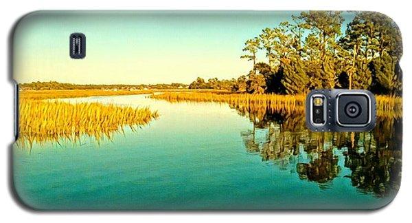 Marvelous Marsh Galaxy S5 Case