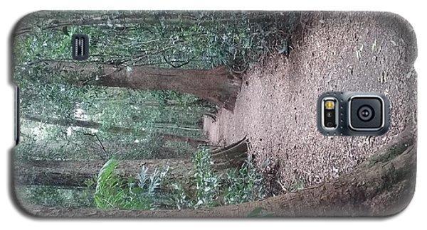 Mary Cairncross Rainforest  Galaxy S5 Case