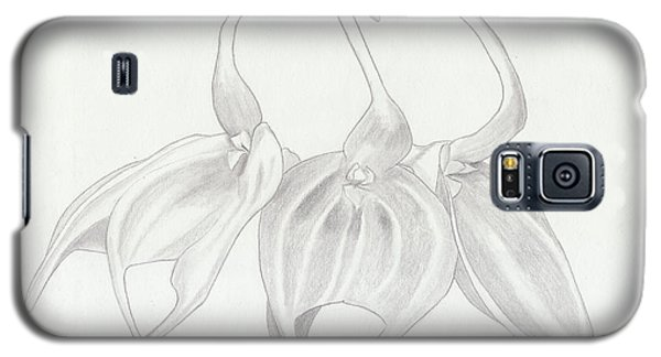 Masdevalia Tovarensis Orchid Galaxy S5 Case