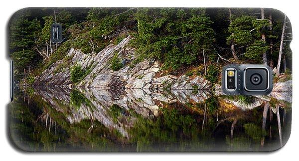 Massasauga Park Reflection Galaxy S5 Case