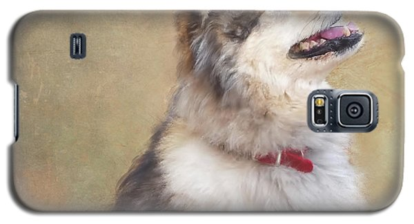 Galaxy S5 Case featuring the painting Master Of The Domain II by Colleen Taylor