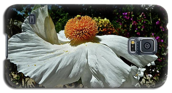 Matilija Poppy Two Galaxy S5 Case