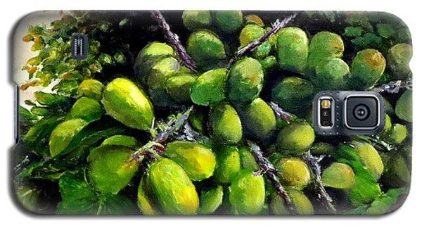 Galaxy S5 Case featuring the painting Matoa Fruit by Jason Sentuf