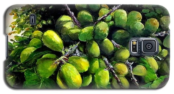 Matoa Fruit Galaxy S5 Case by Jason Sentuf