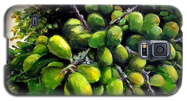 Matoa Fruit Galaxy S5 Case
