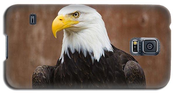 Mature Adult Bald Eagle Galaxy S5 Case