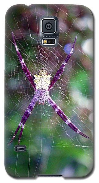 Maui Orbweaver/garden Spider Galaxy S5 Case