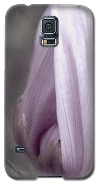 Mauve Galaxy S5 Case