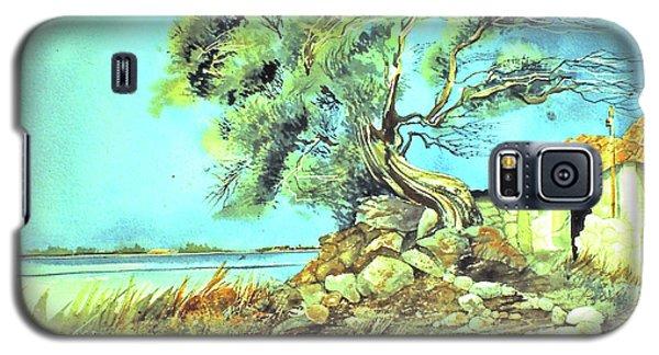 Mayorcan Tree Galaxy S5 Case