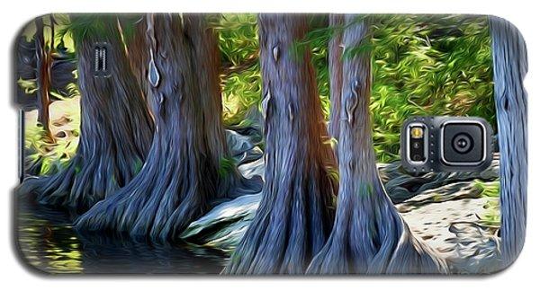 Mckinney Falls State Park - Texas 12118-2 Galaxy S5 Case