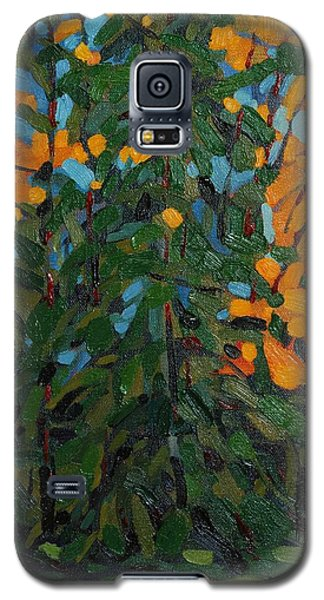 Mcmichael Forest Wall Galaxy S5 Case