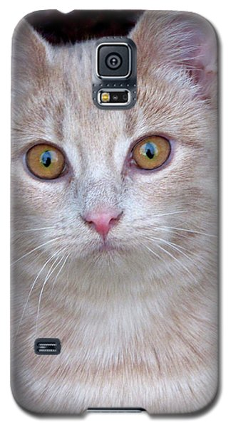 Me- No, It Was The Dog Galaxy S5 Case