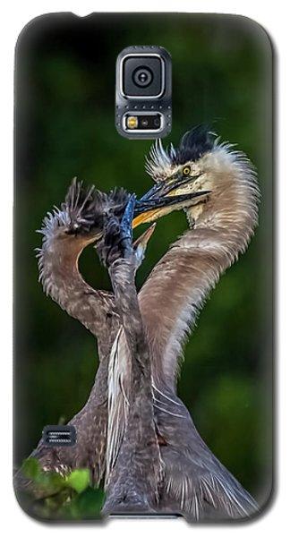 Me Too Galaxy S5 Case