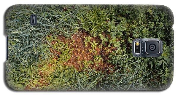 Meadow Floor Galaxy S5 Case