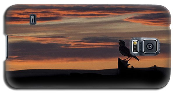 Meadow Lark's Salute To The Sunset Galaxy S5 Case