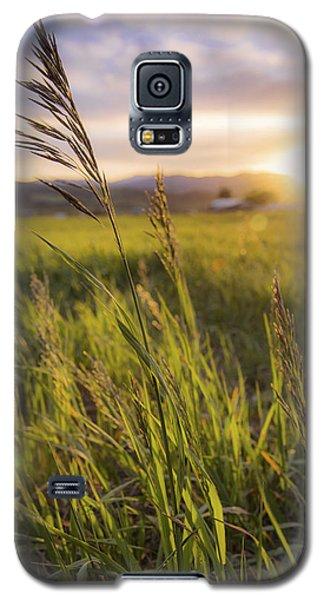 Meadow Light Galaxy S5 Case