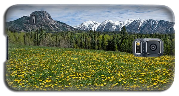 Galaxy S5 Case featuring the photograph Meadow Of Dandelions In The San Juan Mountains by Jeff Goulden