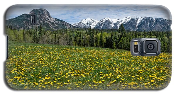 Meadow Of Dandelions In The San Juan Mountains Galaxy S5 Case by Jeff Goulden