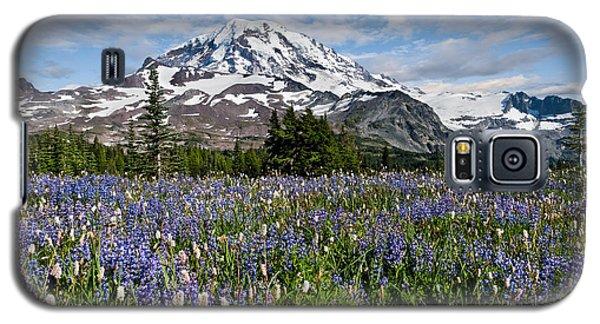 Meadow Of Lupine Near Mount Rainier Galaxy S5 Case