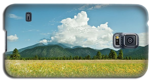Meadow Of Sunflowers And The San Francisco Peaks Galaxy S5 Case