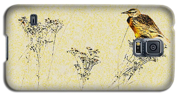 Meadowlark In Kansas Prairie 1 Galaxy S5 Case