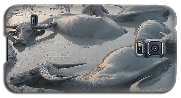 Medium Shot Of A Group Of Water Buffalos Wallowing In A Mud Hole Galaxy S5 Case by Jason Rosette